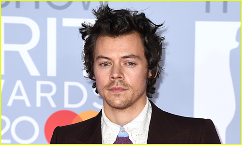 Harry Styles poses on a red carpet in a suit