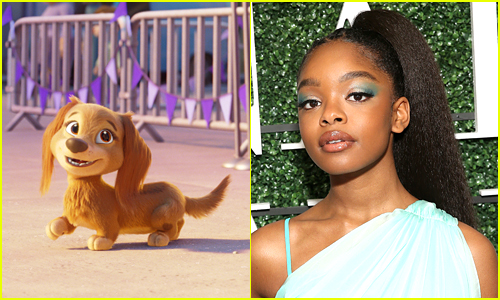 side by side of Marsai martin and her Paw Patrol character Liberty