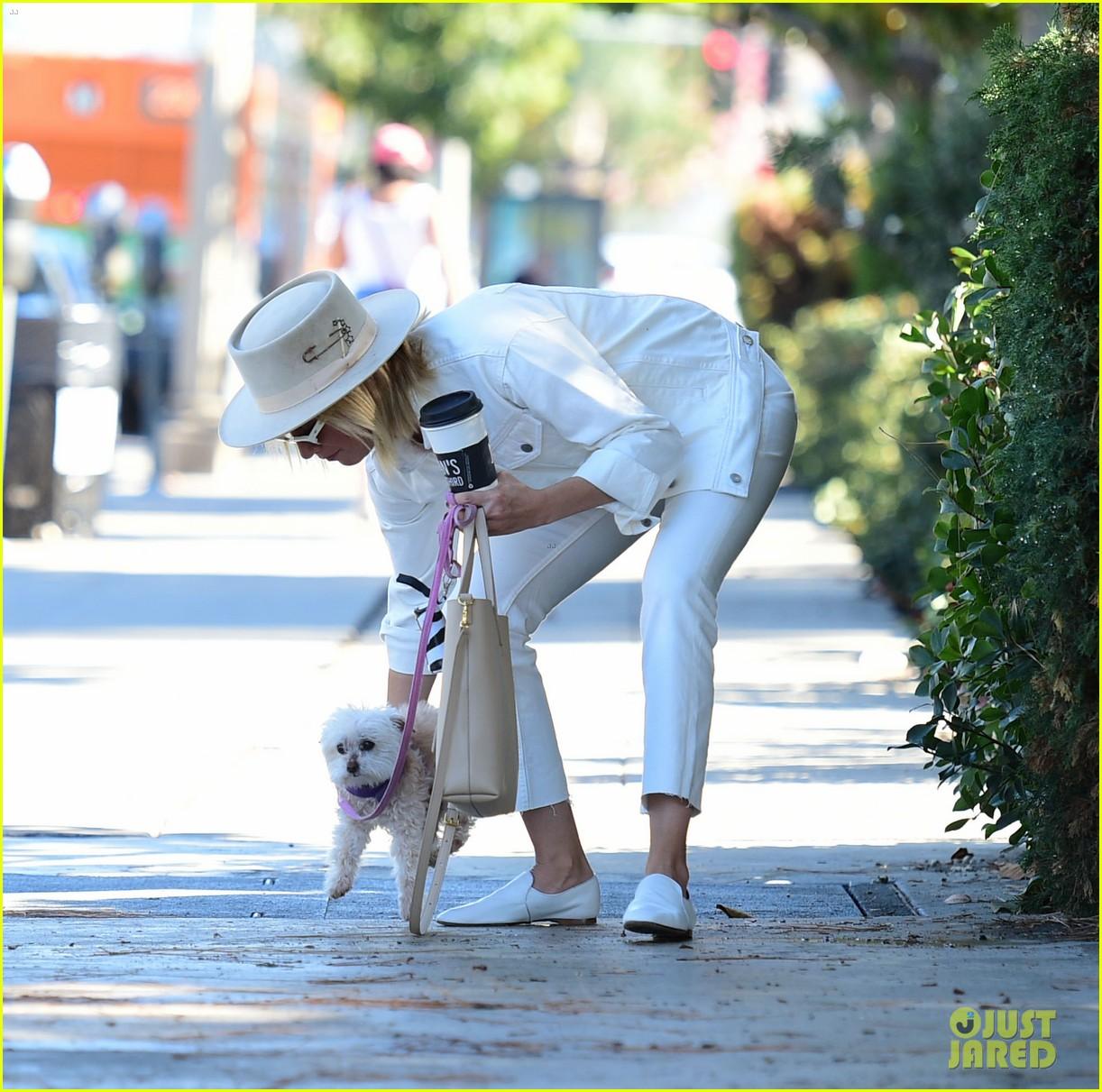 ashley tisdales beloved dog maui passes away 10