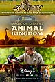 disney plus to take fans behind the scenes of animal kingdom 08.