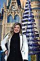 siblings julianne derek hough co host disney magical holiday special 35
