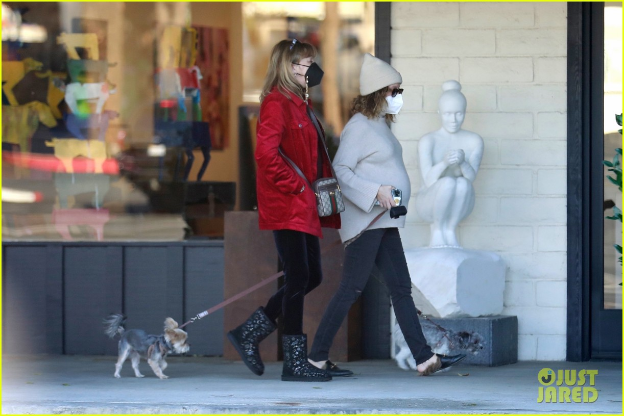pregnant ashley tisdale takes her dogs while shopping 15