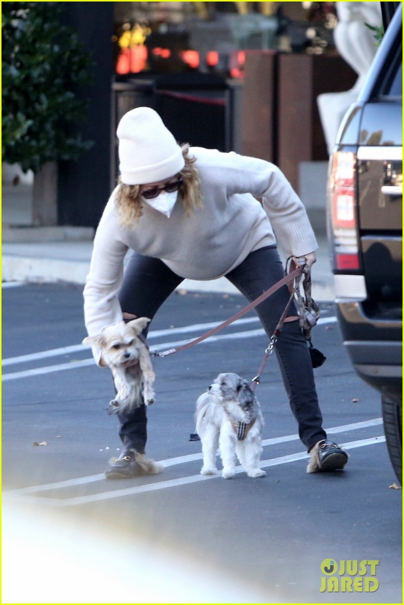 pregnant ashley tisdale takes her dogs while shopping 19