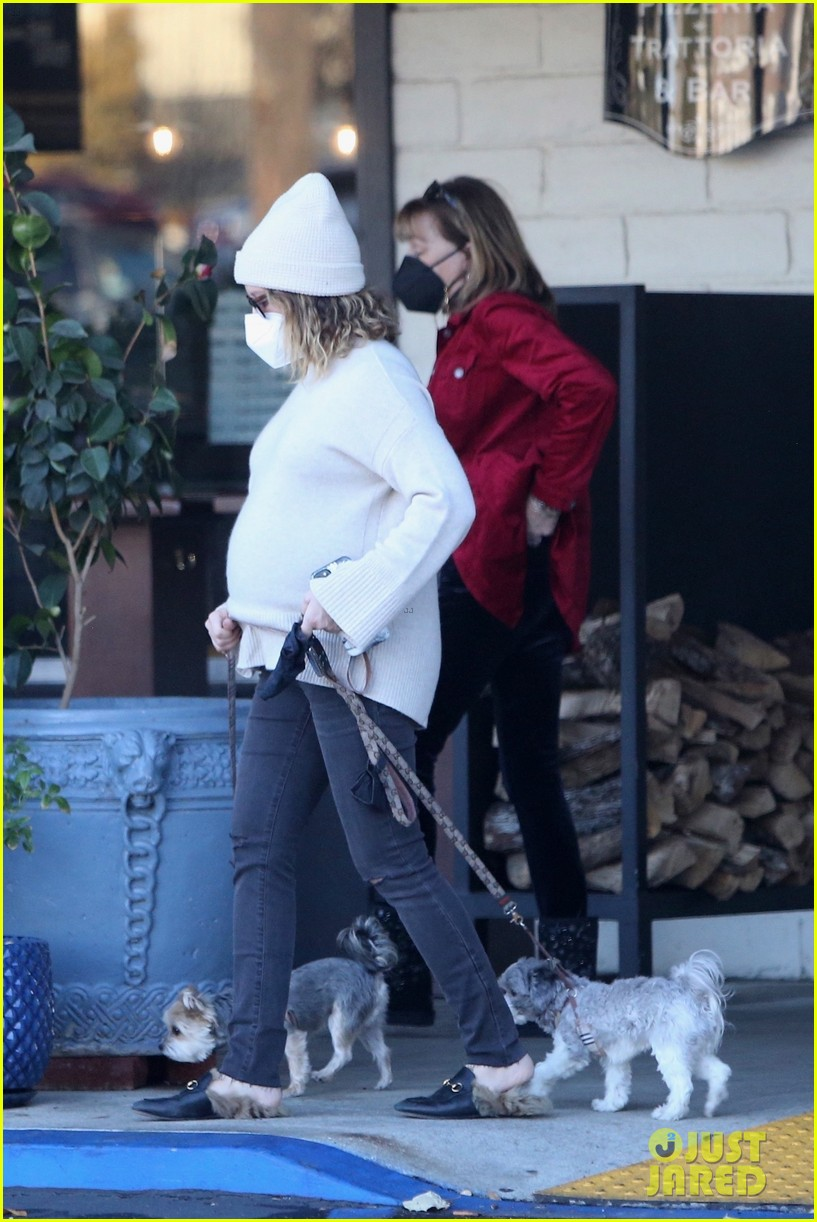 pregnant ashley tisdale takes her dogs while shopping 27