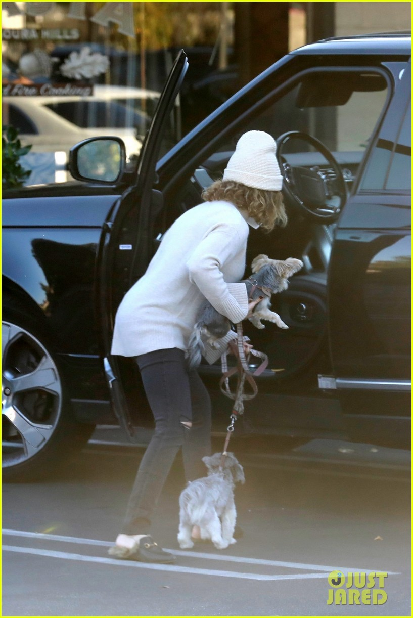 pregnant ashley tisdale takes her dogs while shopping 32