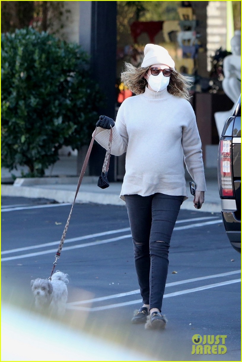 pregnant ashley tisdale takes her dogs while shopping 37