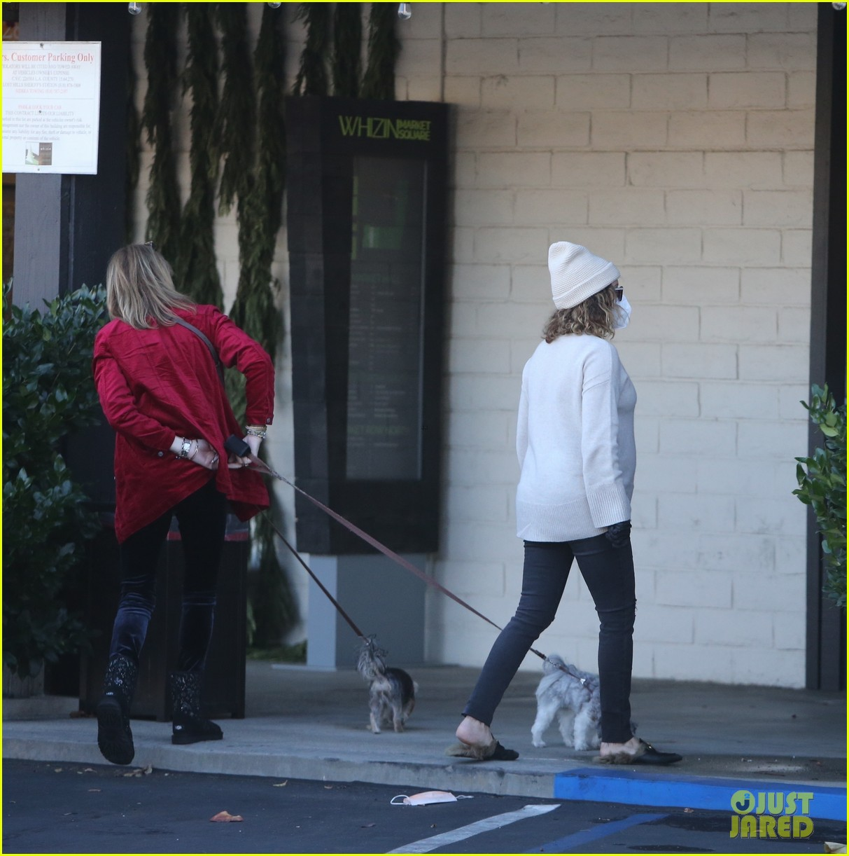 pregnant ashley tisdale takes her dogs while shopping 42