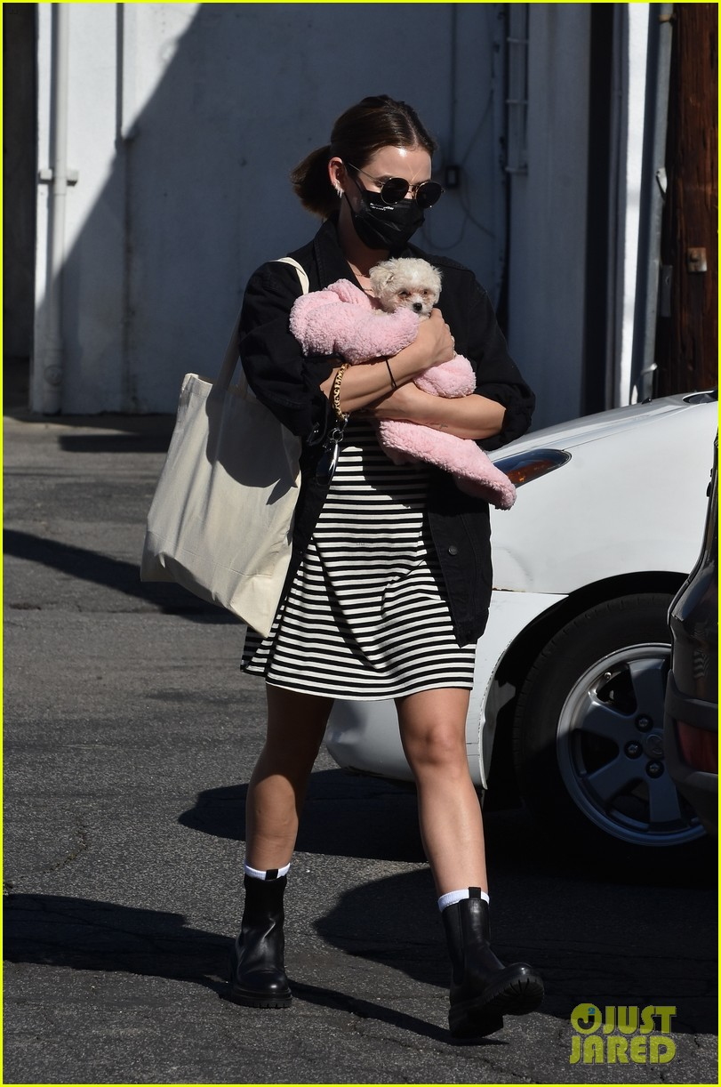 lucy hale new puppy fostered by this star 03