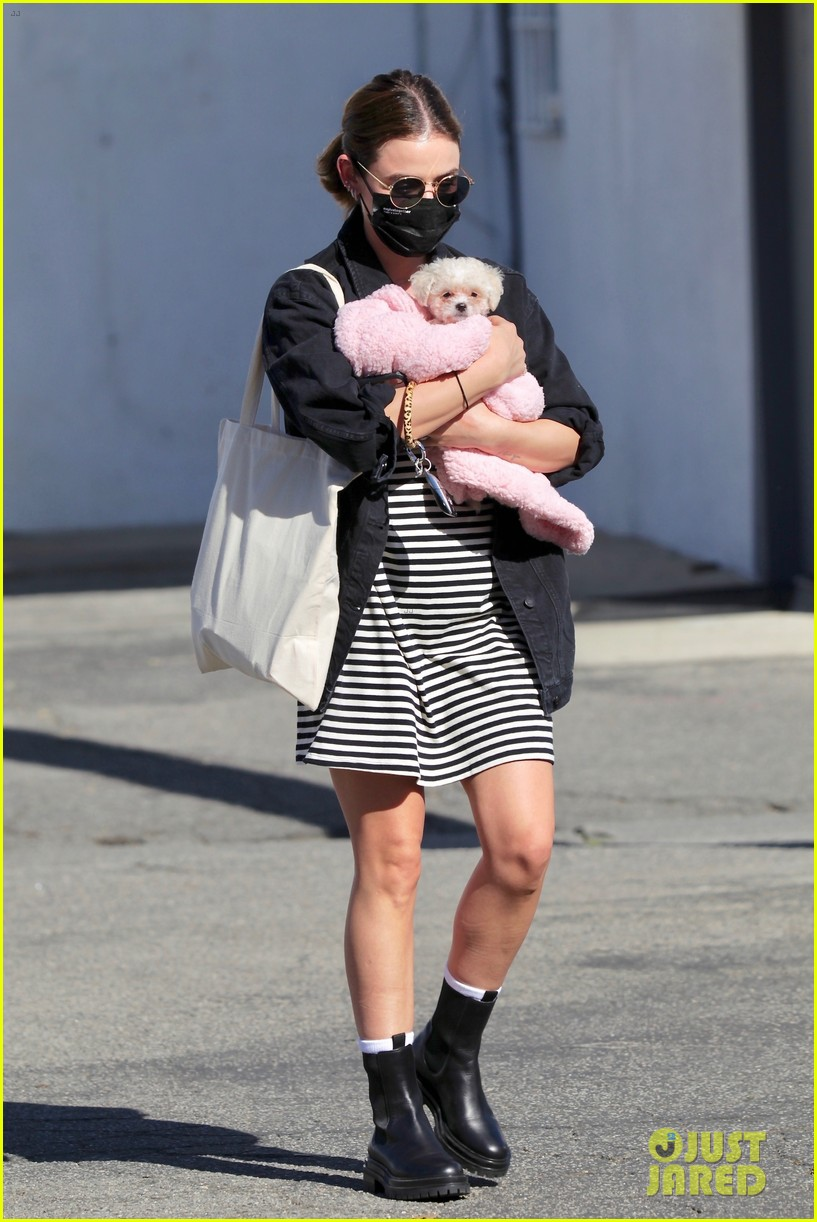 lucy hale new puppy fostered by this star 05