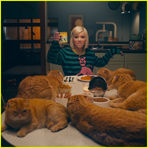 Carly Rae Jepsen Celebrates Love Of Cats in 'Now That I Found You' Music Video!