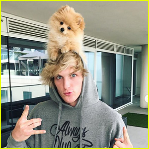 Logan Paul's Beloved Dog Kong Killed by a Coyote