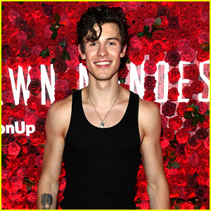Shawn Mendes Performs Special NYC Concert & Looks So Hot in a Tank Top!