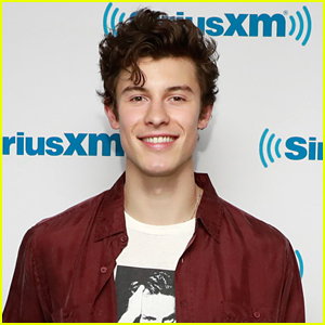 Shawn Mendes' New Song 'If I Can't Have You' Was Originally Meant For This Other Artist