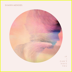 Shawn Mendes Releases New Single 'If I Can't Have You' - Listen Now!
