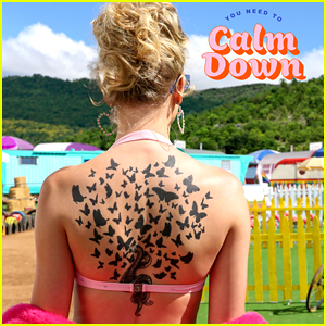 Taylor Swift Reveals Celebrity Cast For 'You Need to Calm Down' Video!