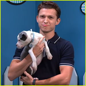 Tom Holland Helps Rescue Puppies Get Adopted