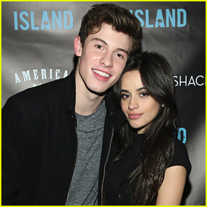 Shawn Mendes & Camila Cabello Have a Date Night at Blink-182 Concert