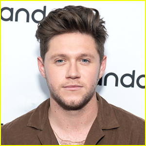 Niall Horan Calls Out Online Bullies In Series of Tweets