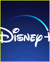 Why Are These Titles Being Removed From Disney+ Already?
