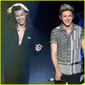 Here's What Niall Horan Had to Say About Harry Styles' Album