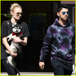 Sophie Turner & Joe Jonas Run Errands Together with Their Dog Porky