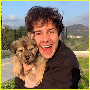 David Dobrik & Natalie Mariduena Foster a Puppy - See What They Named Her!