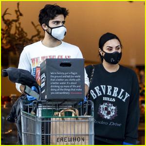 Demi Lovato & Boyfriend Max Ehrich Wear Masks While Grocery Shopping