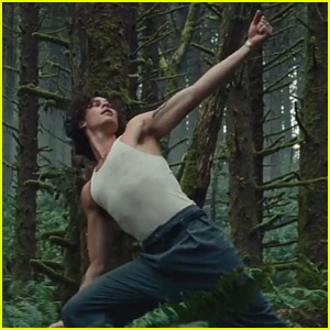 Shawn Mendes' New 'Wonder' Video Finds Him On a Train, in Forest, & on a Cliff - Watch Now!
