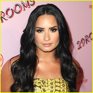 Demi Lovato Shows Off Her Awards & Plaques Display in New Instagram Video