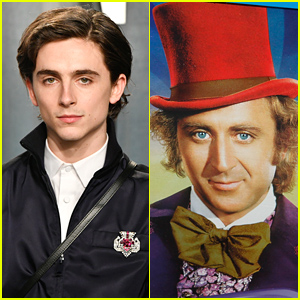 Timothee Chalamet Will Star As Young Willy Wonka In New Movie Musical
