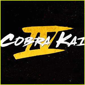 Netflix Reveals New 'Cobra Kai' Teaser, Announces December Release