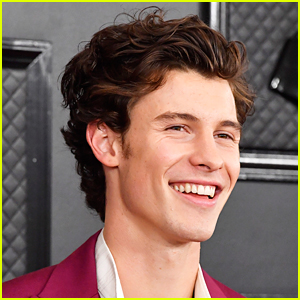Shawn Mendes Reveals 'Summer of Love' Release Date, Features Tainy