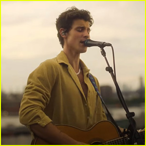 Shawn Mendes Debuts Stripped Down 'Summer of Love' Acoustic Video - Watch!